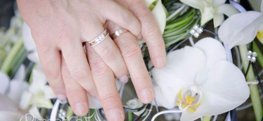 Mariage civil et vin d'honneur dans un beau domaine