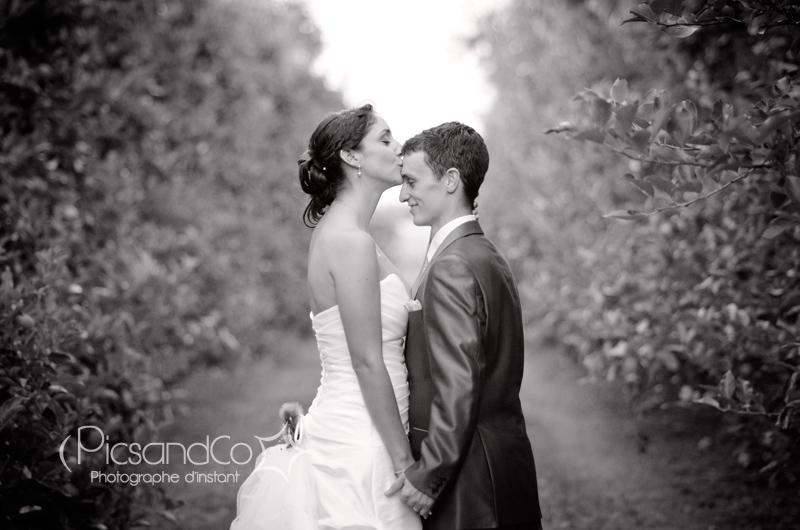 Photo de couple dans les allées des pommiers